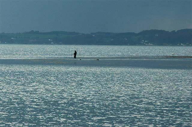 Barsø den 29.4.2006