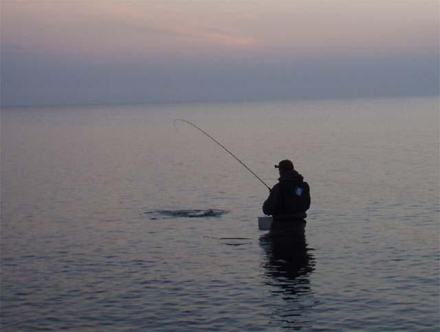 Nordfyn den 11. og 12.7.2008