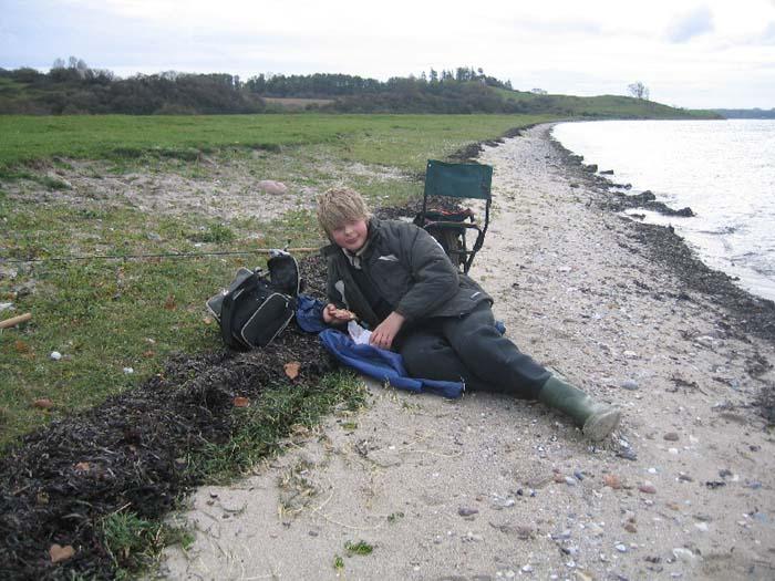 Barsø den 1.11.2008