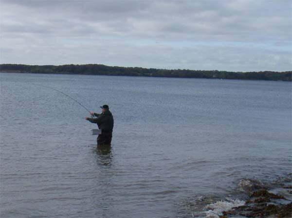 Barsø den 17.10.2009