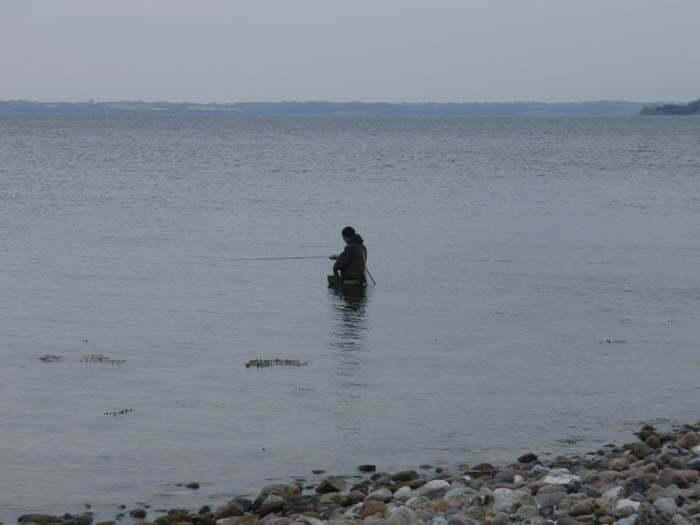 Barsø den 15.5.2010