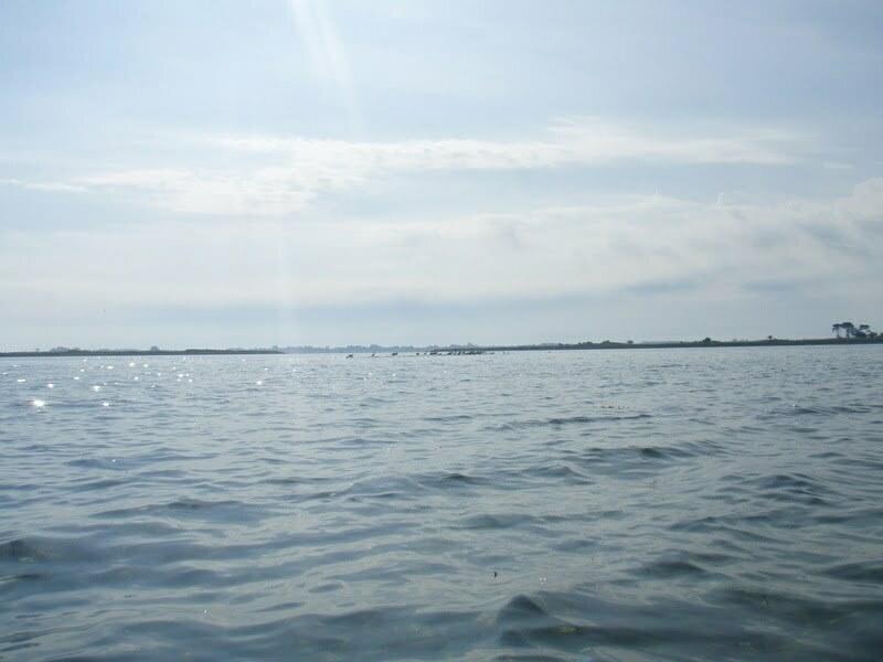 Æbelø august 17-19.8.2012