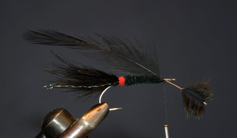 Bind et sort hackle ind, 2 cm lange fibre.