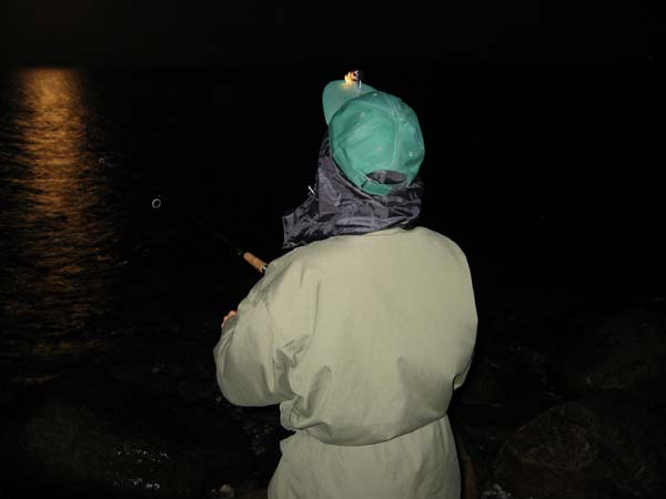 Fiskeri Drejet Ærø