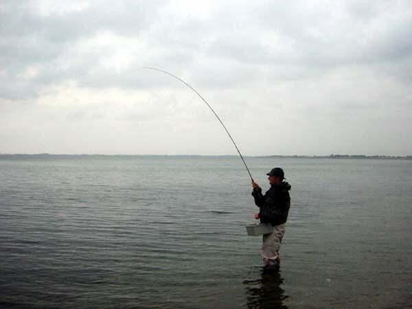 Fiskeri Enebærodde