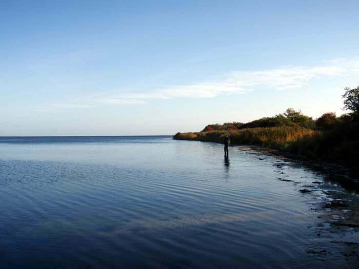 Kirkholm Fiskeri
