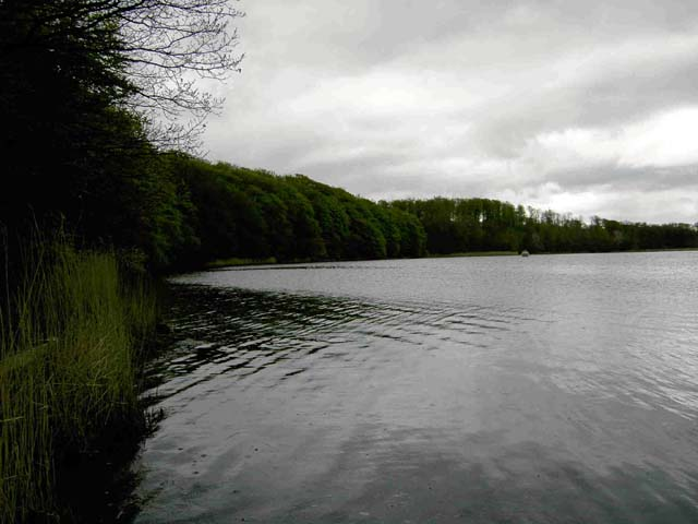 Fiskeri Kvistrup