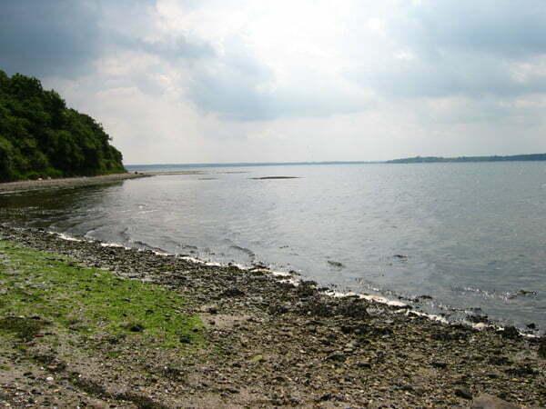 Fiskeri Rohden