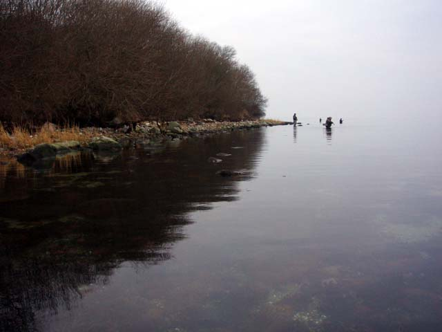 Fiskeri Sønderballe Hoved