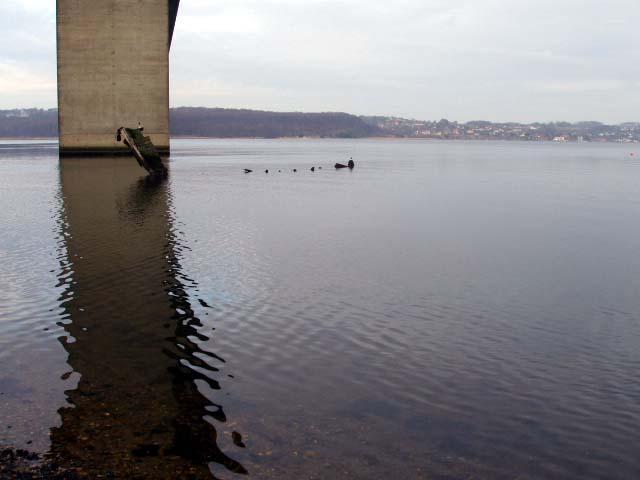 Fiskeri Ibæk Strandvej