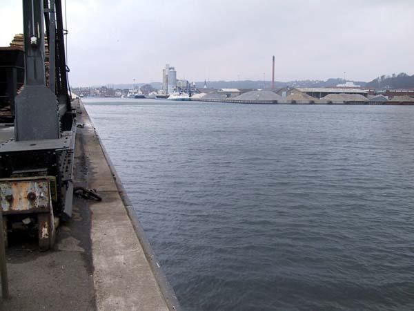 Fiskeri Vejle Havn